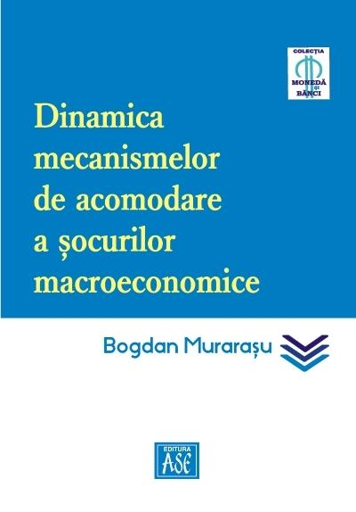 Dynamics of macroeconomic shock absorption mechanisms